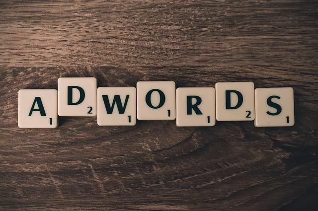 Profesjonalista  w dziedzinie kampani Adwords wspomoże i dostosuje godziwą strategie do twojego interesu.